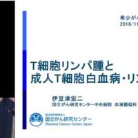 news_20190504_12